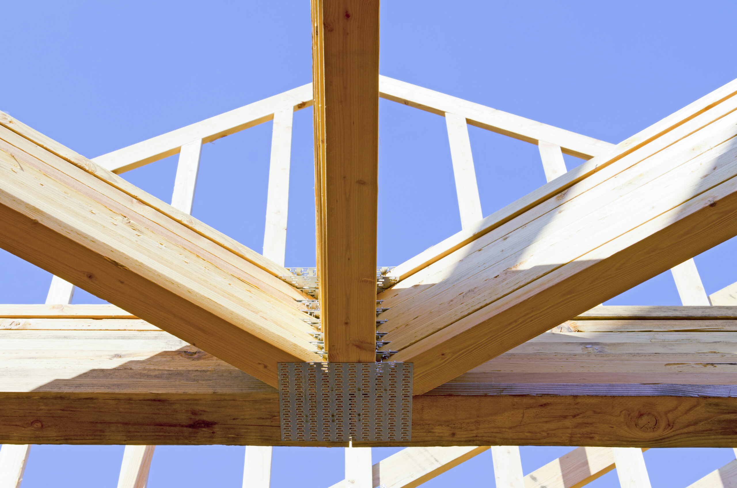 Mass Timber Shines in a Carbon-Friendly World